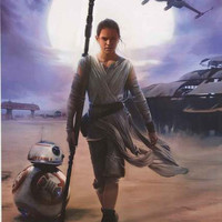 Star Wars Force Awakens Rey and BB-8 Poster 22x34