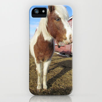 Mini Horse iPhone & iPod Case by NikkiColwell