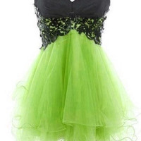 Fantastic Lace Ball Gown Sweetheart Mini Prom Dress/Graduation Dress