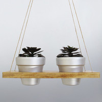 Hanging Planter, Succulent Planter, Terracotta Pot, Air Planter, Hanging Pot, Silver Planter, Modern Planter, Wood Planter, Rustic Planter