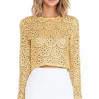 Alexis Laiden Lace Crop Top in Yellow
