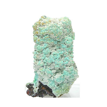 Blue Hemimorphite Natural Botryoidal Mineral Specimen from Mexico Variety:Calamine