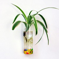 Wall Hanging Glass Flower Planter Vase Plant Pot Terrarium Home Garden Decor
