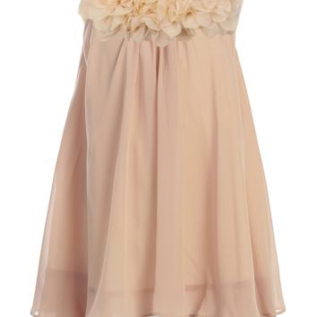 Champagne Chiffon Shift Dress with 2 Tier Hem & Floral Mesh Neckline (Girls 2T - Size 14)