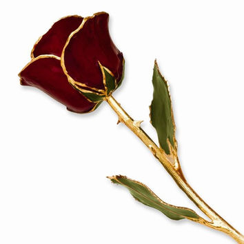 24k Gold Plated Trim Burgundy Rose