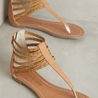Guilhermina Sastri Sandals in Nude Size: