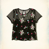 Girls Embroidered Mesh Baby T-Shirt | Girls New Arrivals | HollisterCo.com