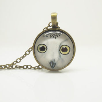 1PC Epoxy Transparent Time Gems Alloy Snow Owl Retro Chain Necklace w/Alphabet Charm Friend Gift Fashion Jewelry