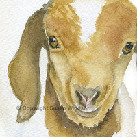 Goat Watercolor Painting Giclee Reproduction - 11 x 14 - Giclee Print - Nursery Art - Farm Animals