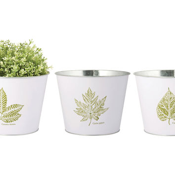 "9.4"" Asst. of 3 Leaf Print Planters, Outdoor Urns, Planters & Jardinieres"