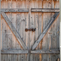 Barn Door Shower Curtain Rustic Vintage Edition