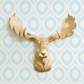 The Alberta Large Gold Faux Taxidermy Resin Moose Head Wall Mount | Gold Moose w/ Colored Antlers