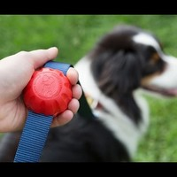 Ergonomic Leash Grip by Lead Mate