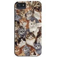 Cats on Cats on Cats Case