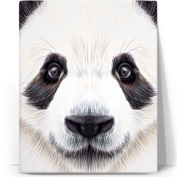 Panda Animal Canvas