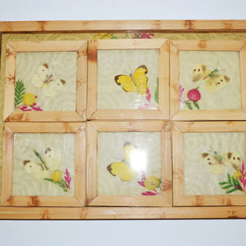 Vintage Bamboo Tray Mid Century Butterfly Bamboo Tray With Six Coasters Butterflies Pressed Flowers Serving Tray with Matching Coasters