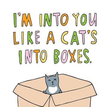 Romantic Card - I'm Into You Like A Cat's Into Boxes