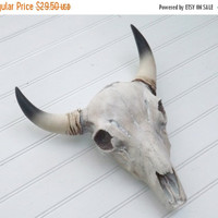 YEAR END SALE Cow Skull / Western Decor / Faux taxidermy / White Washed Skull / Bison Skull / Anthropolgie /Texas Longhorn / Shabby Chic Dec