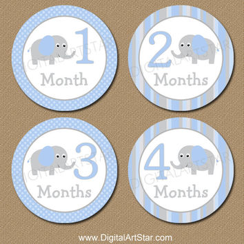 Elephant Monthly Milestone Stickers - Printable Onepiece Stickers - Iron On Transfers - Photo Prop Baby Shower Gift - Blue Grey - INSTANT