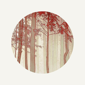 Woodland photography Autumn photography Nature Fine art Print Red Cream Circular photo