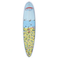 Roswell Beach Surfboard