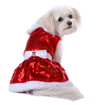 Top Paw™ Pet Holiday Mrs. Claus Sequin Dress