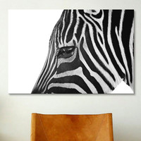 iCanvasArt 'Ignoring Zebra' by Bob Larson Photographic Print on Canvas