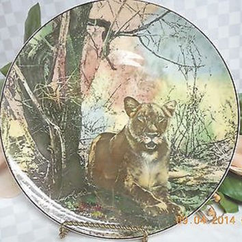 Royal Doulton Collectors plate African Lioness African Seri Game Reserve #D6360