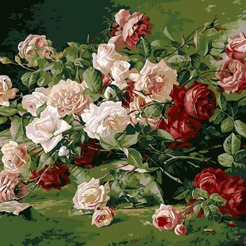 Frameless  painting by numbers diy picture oil painting on canvas for home decor canvas painting 4050 white and red rose