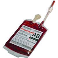 Single Novelty Blood Bag with Perma-Blood Paint Halloween Decor Prop AB Positive