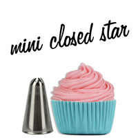 Closed Star MINI Cupcake Decorating Tip #30