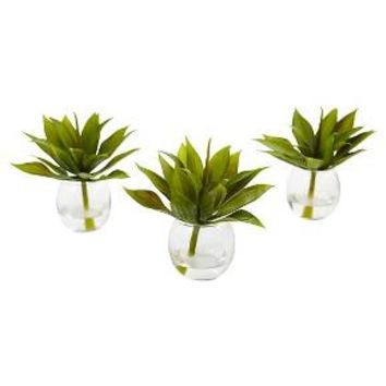 "5.75"" Mini Agave Succulent Trio in Glass Vases (Set of 3) - Nearly Natural"