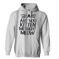 Are You Kitten Me Right Meow Hoodie for Mens Hoodie and Womens Hoodie
