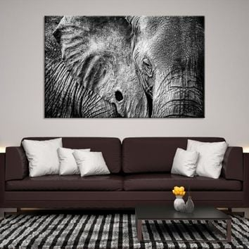 51030 - Wild Elephant Wall Art Canvas Print