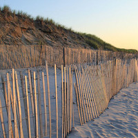 Beach Fence Print - Cape Cod Photography Home Decor