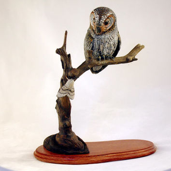 Flammulated Owl Wood Carving Hand Carved Sculpture