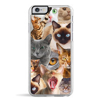 Cat Riot iPhone 6 Case