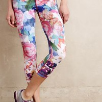 Bloomburst Leggings by Vimmia Pink