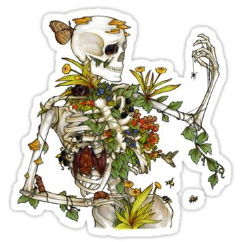 'Bones and Botany' Sticker by Elizabeth Moss