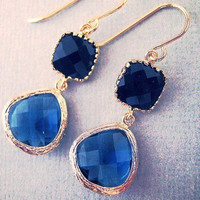 Black Onyx and Sapphire Glass DangleEarrings