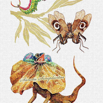 Zoological Antique Illustration Digital Download Printable Image no. 110