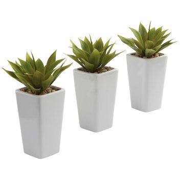 Silk Flowers -Mini Agave With Planter -Set Of 3 White Artificial Plant