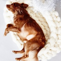 Free People Chunky Knit Wool Dog Bed