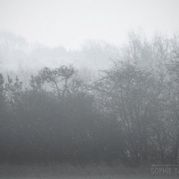 Tree canvas art, black and white, foggy trees, minimalist wall art, fog, home decor, grey, fine art photography, monochrome,large, oversized