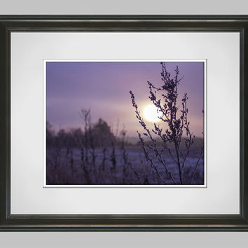 Purple Autumn Country Landscape Photography Print