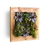 Reclaimed Wood Eco Living Wall (491563286), Wood Wall Art, Wall Planters, Wreaths & More | bambeco