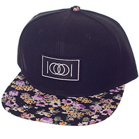 Paper Root The Purple Flowers Burnin Snapback