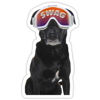 'Swag Dog' Sticker by Carissariley