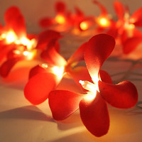 Red Colors Frangipani / Plumeria Flower Wedding Holiday Party String Lights 20 Lanterns