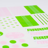 Big Pink and Green Planner Sticker Kit